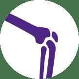 Knees - Total Treatment